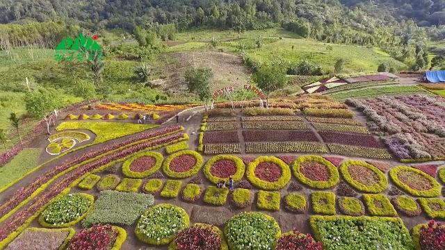 Hesti's Garden merangin