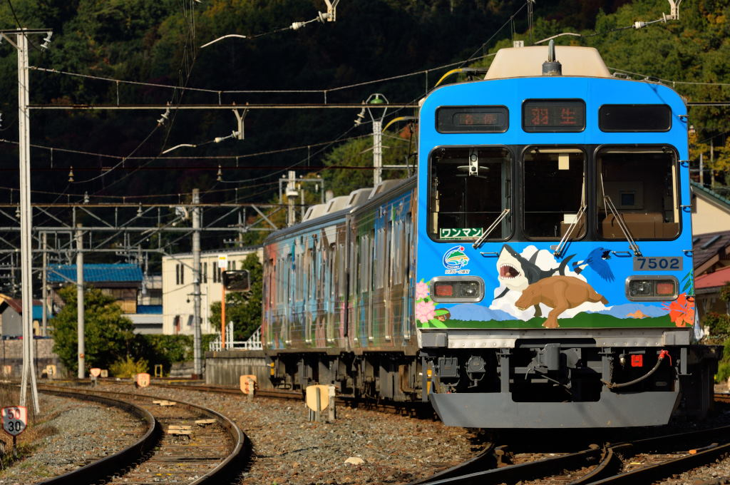 CTK_7502F_in_Chichibu_Geopark_train_001