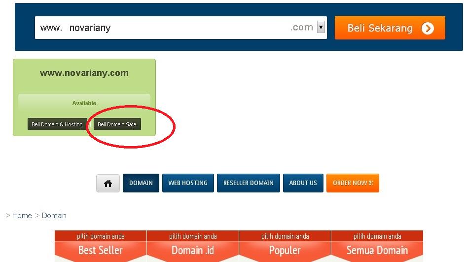 custom domain dari blogger jadi .com