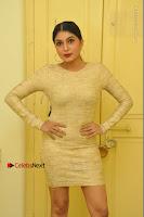 Actress Pooja Roshan Stills in Golden Short Dress at Box Movie Audio Launch  0009.JPG