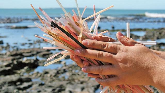 Câmara de Macaé aprova PL que proíbe o uso de canudos e copos plásticos