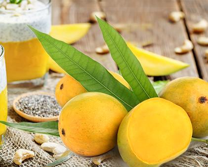 The king of fruits:Mango