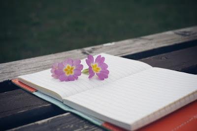 Ini Dia 7 Manfaat Menakjubkan Dari Menulis