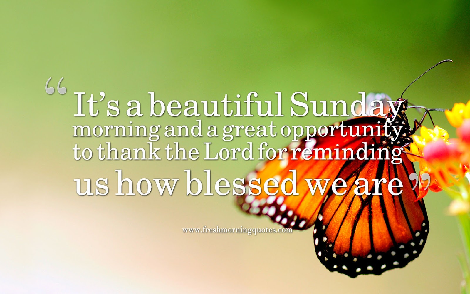 its a beautiful sunday quotes and images
