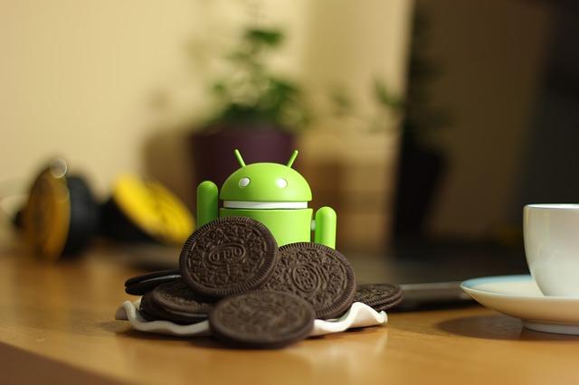 Sudah diketahui jika Google selalu mengembangkan sistem operasi yang dimiliki. Dari awal,  sistem operasi Android diluncurkan Google tanpa nama yang hanya ditandai dengan Android 1.1 yang tak lama kemudian diluncurkan Android Cupcake. Setelah itu pengembangan terus dilanjutkan oleh Google sampai pada Android Oreo yang diluncurkan pada tahun 2017 silam.