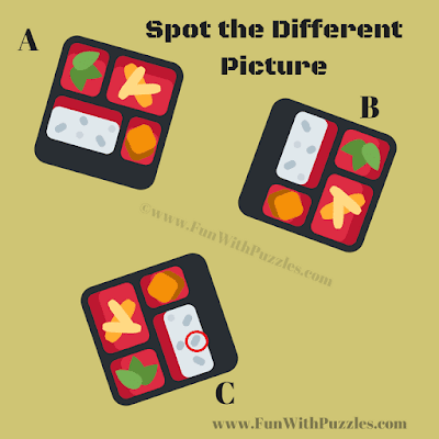 Spot The different picture puzzle Answer