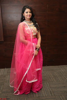 Geethanjali sizzles in Pink at Mixture Potlam Movie Audio Launch 039.JPG