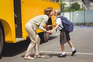 Seguridad en el transporte escolar - Fénix Directo Blog