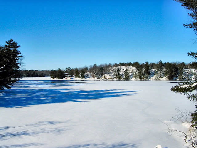 A view of Tea Lake in northern Ontario, covered with winter snows.