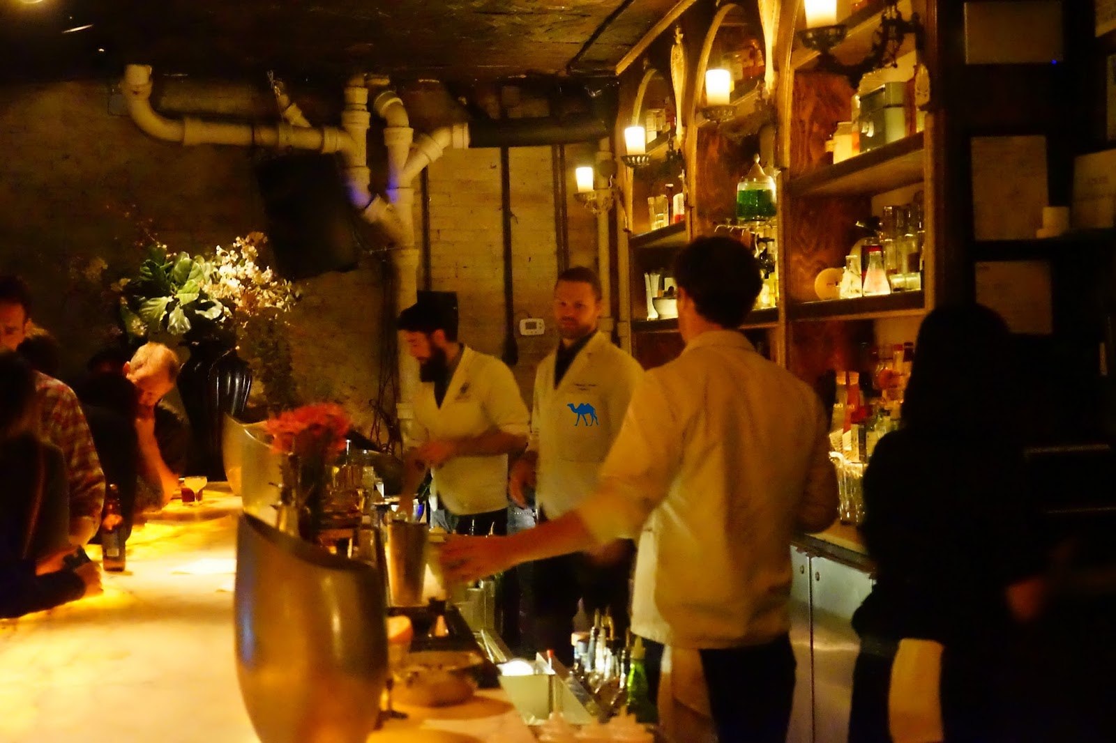 Bar de l'Apotheke - Le chameau Bleu - Bar à cocktail dans New York USA