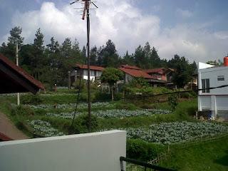 http://penginapanlembang.blogspot.com/2016/02/villa-murah-di-lembang-bandung.html