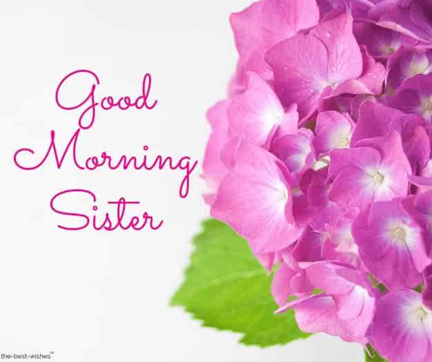 good morning big sister