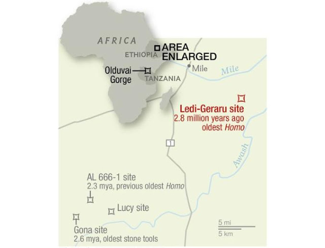Map of Africa showing the sites of early human fossil discoveries.