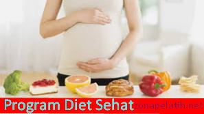 program diet sehat untuk tubuh ideal