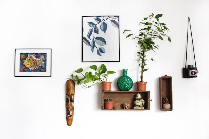 Cuadros, cajas y plantas en la pared