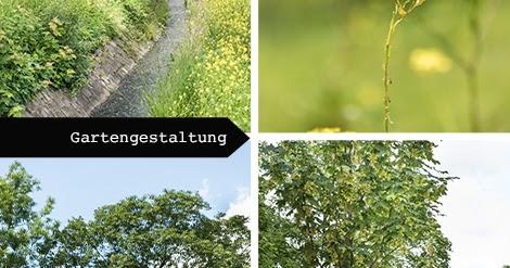 Raumideen gartenidee die landesgartenschau in bayreuth for Gartenidee magazin