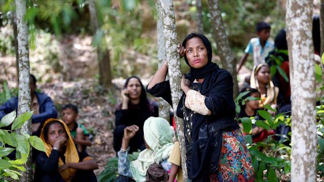 Poin-Poin Pernyataan Resmi Al-Azhar Terkait Krisis Rohingya