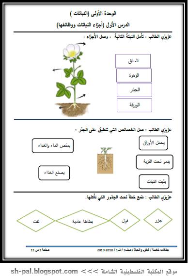 أوراق عمل في العلوم والحياة للصف الثالث الفصل الأول 2019 المكتبة الفلسطينية الشاملة