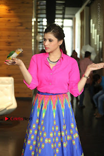Actress Mannar Chopra in Pink Top and Blue Skirt at Rogue movie Interview  0058.JPG