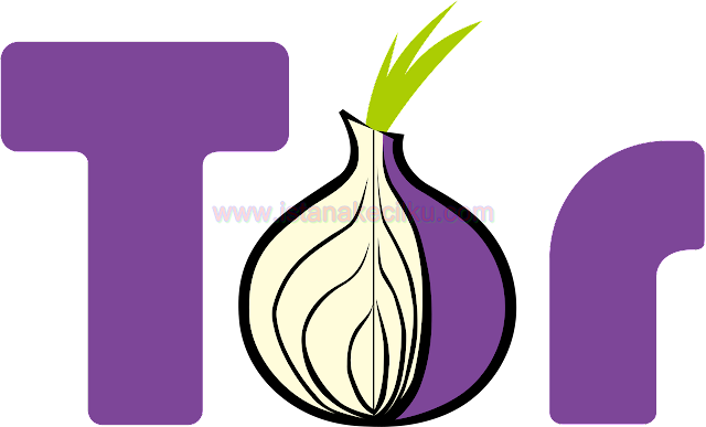 TOR untuk Android: Bagaimana Cara Mengakses Deep Web Lewat Android Dengan Tetap Aman