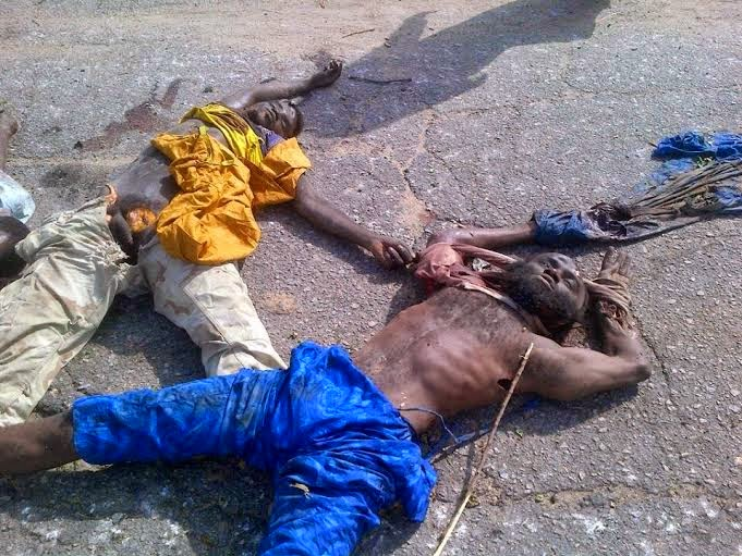 4 Viewers Discretion Is Adviced!! See Pics Of Boko Haram Militants Nilled By Nigerian Troops (Graphic Photos)