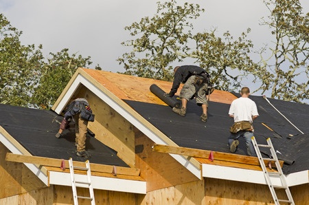 Which type of roofs will the homeowners prefer?