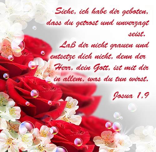 Bilder Mit Bibelversen