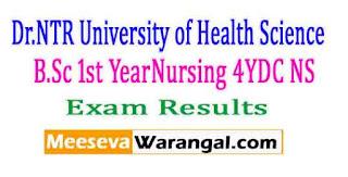 Dr.NTR University of Health Science B.Sc 1st Year(Nursing) 4YDC (NS) Nov 2016 Exam Results