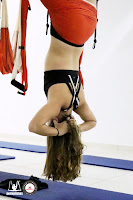 inversion, suspension