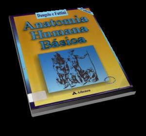 Anatomia Humana Basica Dangelo E Fattini Pdf