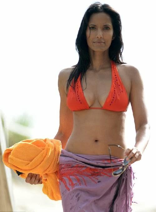 Indian desi wife shows deep saree cleavage in indian train