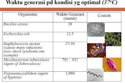 kurva pertumbuhan bakteri, waktu generasi bakteri, Pembelahan biner pada bakteri, Proses konjugasi pada bakteri,transduksi bakteri
