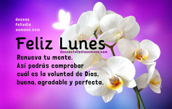 Frases positivas de feliz lunes, saludos con imágenes cristianas del lunes para facebook, mensajes de bendición por Mery Bracho