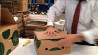 cajas para frutas y verduras de 5 kg y 10 kg