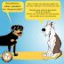 Sintomas de depressão em cães