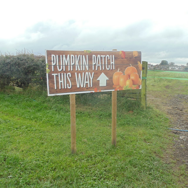Pumpkin patch sign,  farmer copleys