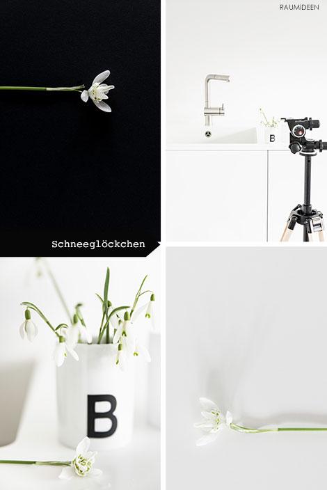 Blumendeko - Schneeglöckchen in der Vase.