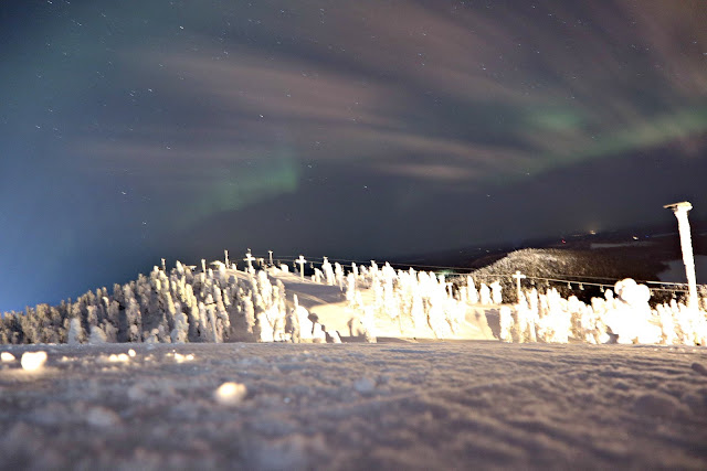 The Northern Lights, taken from Ruka mountain, overlooking a snowy forest.