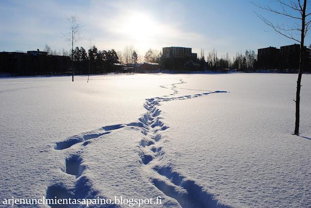 Kuopio, luonto, talvi, lumi,