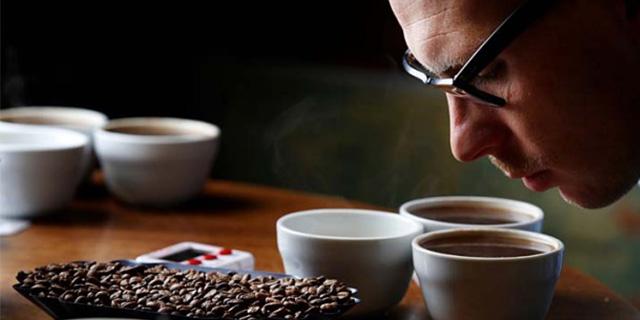 kahve tadimi yapimi, kahve aroması tadımı, Www.KahveKafe.Net