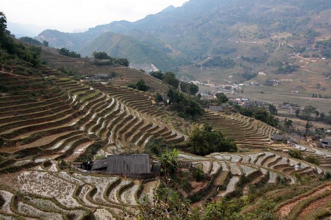 Terrazas de arroz de Sapa