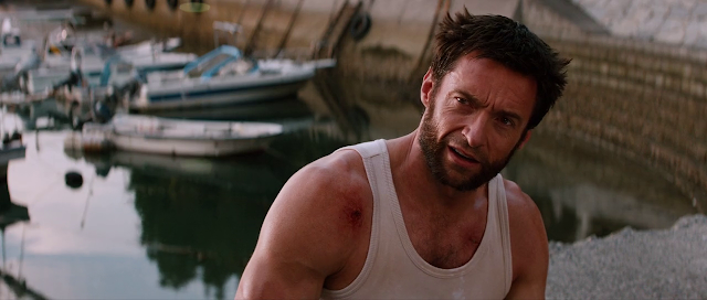 The Wolverine (2013) Extended Dual Audio [Hindi-DD5.1] 720p BluRay ESubs Download