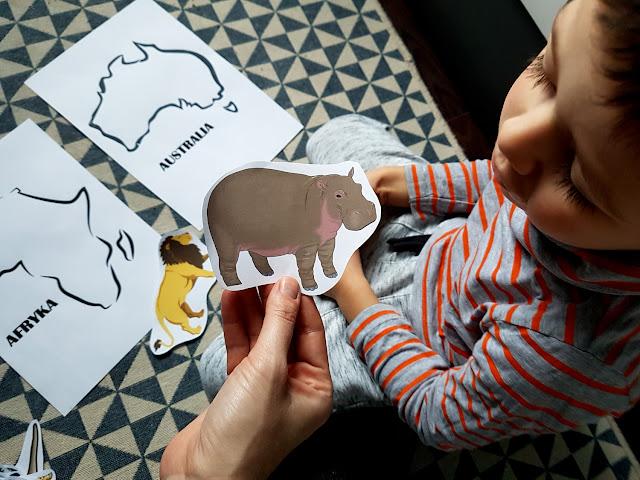 poznajemy kontynenty - geografia na wesoło - nauka przez zabawę