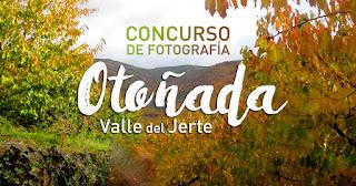 CONCURSO DE FOTOGRAFÍA ON-LINE