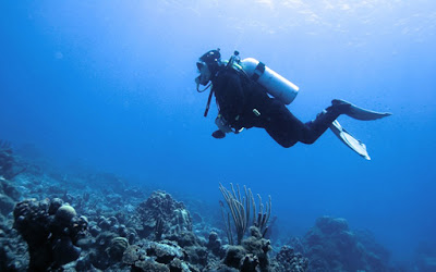 "Piscina de buceo más profunda del mundo ""OCEANUS 51"" a punto de salir – Grösstes Tauchbecken der Welt in Planung – Calpe (Costa Blanca), Mario Schumacher Blog"
