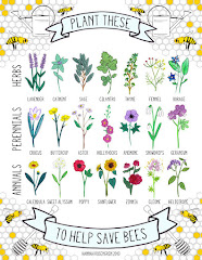 Plant these, save bees.