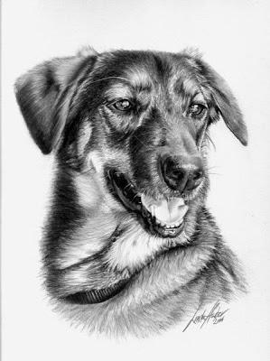dibujo artístico realista a lápiz de un perro