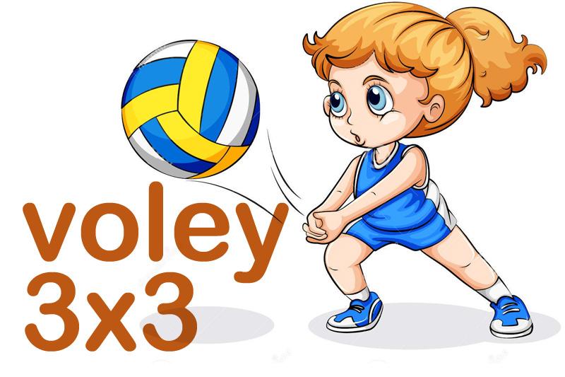 Reglas o normas del voleibol