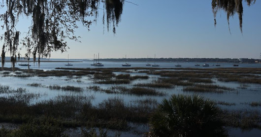 2017 XMAS TRIP - THE SOUTH-EAST: Georgia, Northern Florida, South Carolina and much more (day 8 - Road to Charleston)
