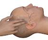 Височная мышца: пальпация, анатомия и немного физиологии